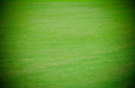 Golf hole on the green grass. photo