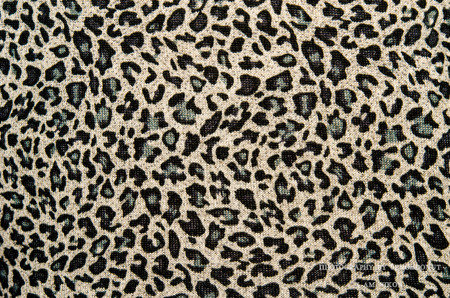 Modern stylish texture. The tiger cotton chintz. photo