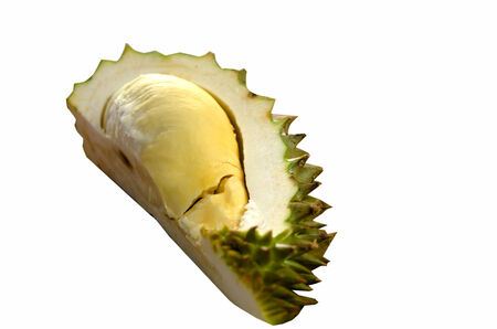 Durian isolated on white back ground photo