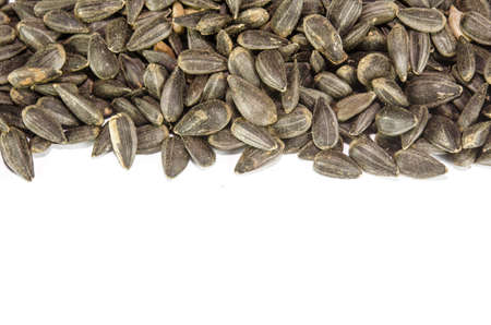 a pile of sunflower seeds isolated on the background. photo