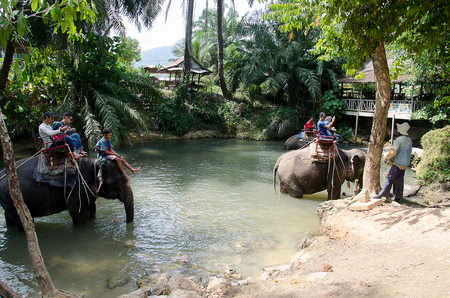 THAILAND, KARBI, FEBRUARY 24 2016.Elephant trekking in Karbi, tourists attraction. Ao Nang Krabi the frist elephant camp