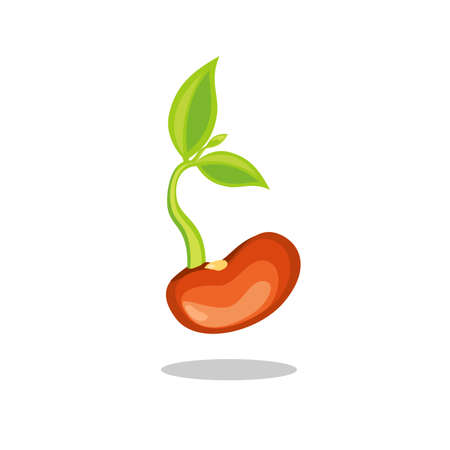 Simple sprouting seed drawing. Green cartoon sprout vector illustration.
