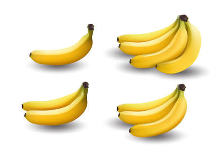 realistic illustration bananas, 3d vector icons. Banana isolated on white background, banana icon. Vector illustration.
