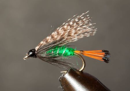 Closeup of a Teal and Red traditional trout fly photo