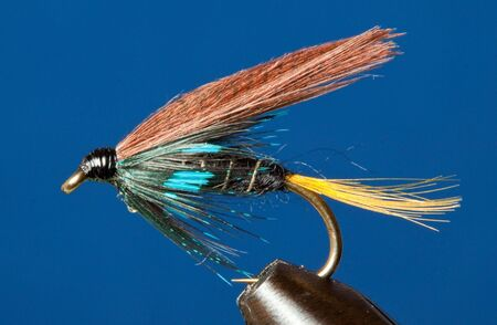 Closeup of a Connemara Black traditional trout fly photo