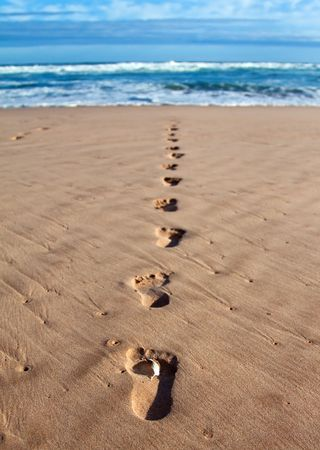Footprints with feather in wet sand in a line towards the sea and breakers Stock Photo