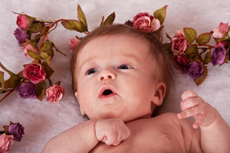 Pink and purple roses surrounding baby girl photo