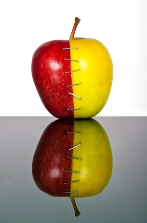 two and a half: Yellow and red apple halves joined by staples