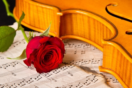 Violin sheet music and rose black composition still life music Stock Photo - 19135230