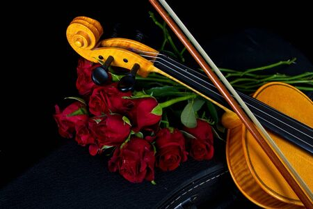 case sheet: Violin in carry red case with sheet music with red roses