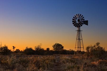 風車草と明るい色彩でカラハリ砂漠で素敵な夕日 写真素材 - 21262044