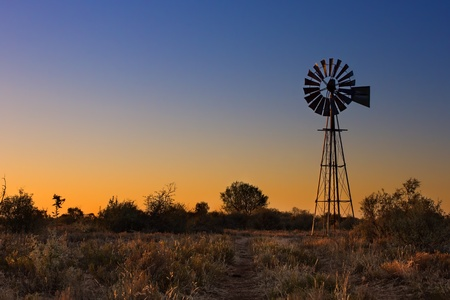 Lovely sunset in Kalahari with windmill grass and bright colours