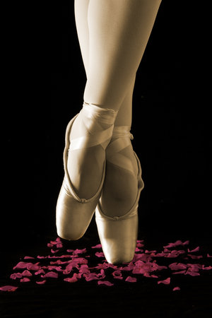 A ballet dancer standing on toes with rose petals on black background artistic conversion photo