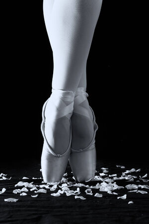 A ballet dancer standing on toes with rose petals on black  photo
