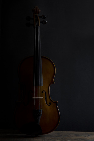 side lighting: Low key violin in vertical position with soft side lighting