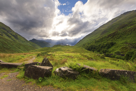 Green and lush glen in Scotland highlands after the rain