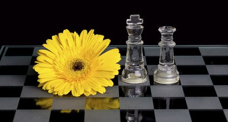 Yellow flower on a black and white glass chess board with king and queen