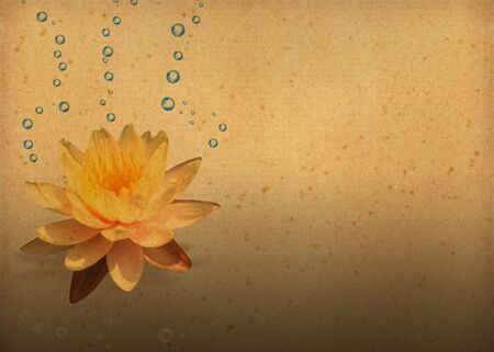 magic lily: vintage paper textures with Lotus Flowers