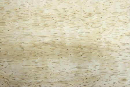 Texture of wood pattern background  Stock Photo - 9504307