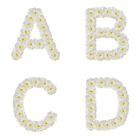 Letters made of tropical flowers frangipani (plumeria) isolated ,ABCD Stock Photo - 9894035