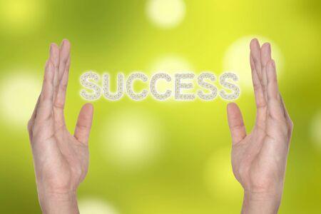 Success in hand , successful business idea Stock Photo - 9894037