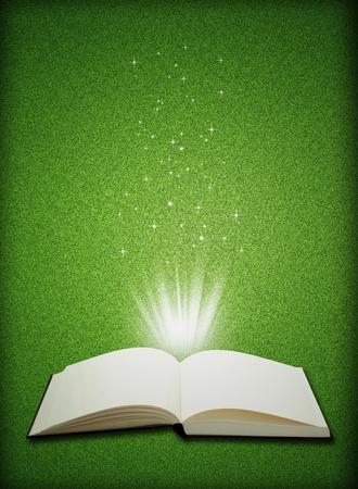 Magia del libro aperto su sfondo verde erba - concetto di educazione  Archivio Fotografico