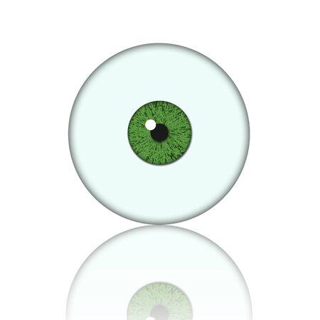 eye ball: