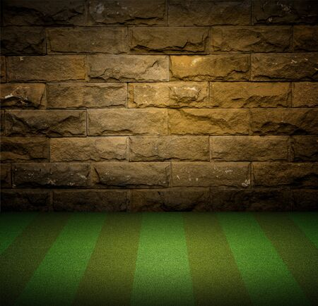 Brick Wall and Green Grass Stock Photo - 9894306