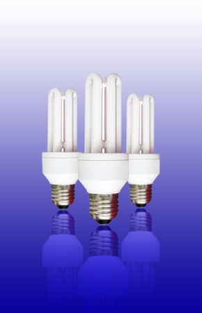 isolated compact florescent light bulb photo