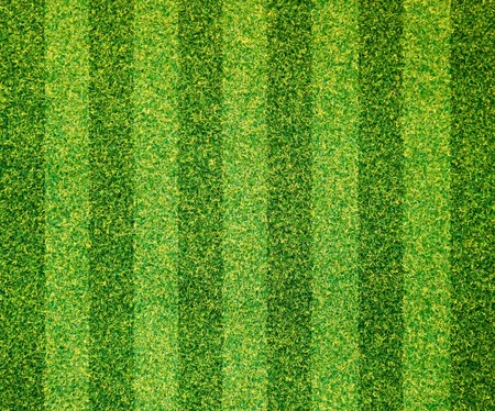 Artificial grass background Stock Photo - 10447339