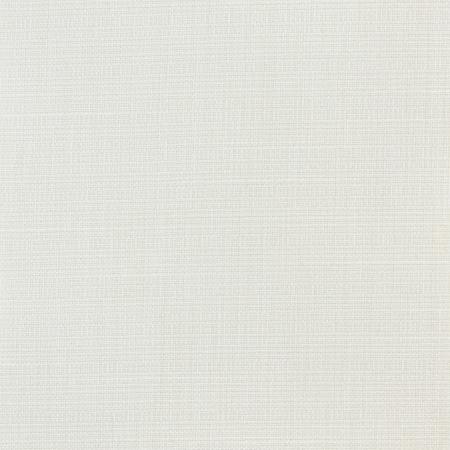 tela blanca: Lino blanco textura de la lona