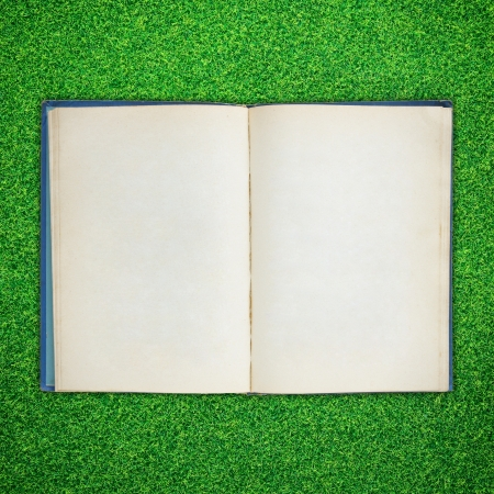 Old book open on green grass background photo