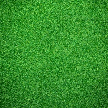 Groene gras achtergrond