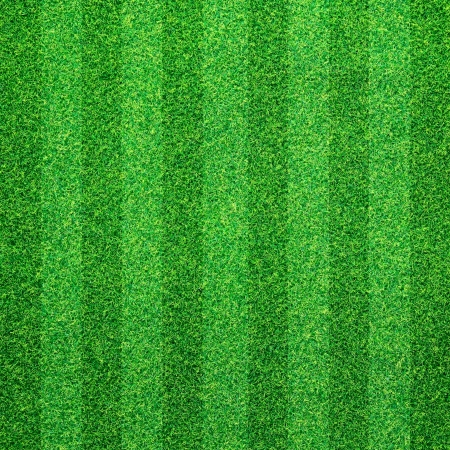 synthetic fiber: Green grass background