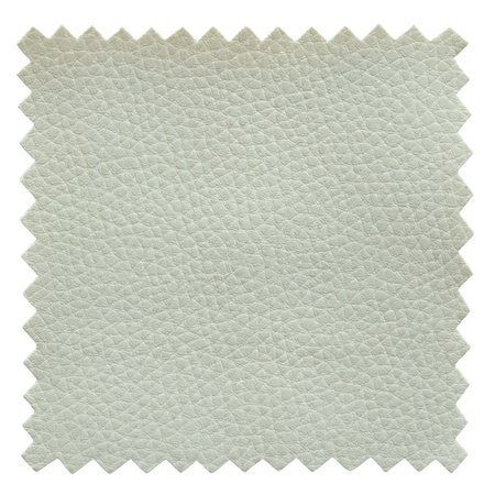 white leather samples texture photo