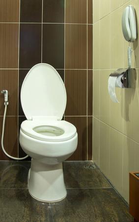 bathroom interior: toilet bowl in the bathroom