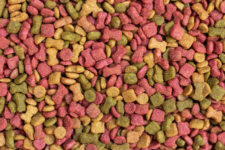 detail of dry dog food background