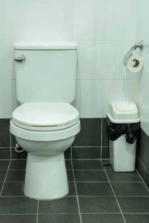 Toilet bowl and toilet paper in the bathroom