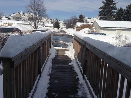 michigan snow: Walking in Winter