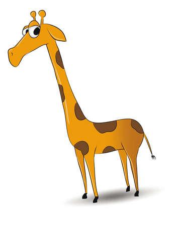 Cartoon looking giraffe isolated on white background
