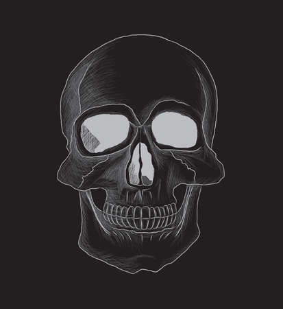 Very detailed skull vector illustration isolated on black  The contour,details and background are separated in different layers