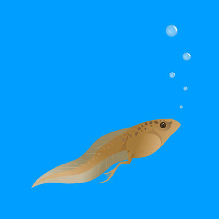 Tadpoles are in the water and breathing with bubbles on a blue background. Foto de archivo - 129204249