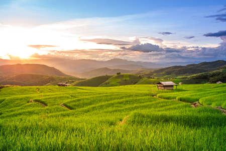 Schöner Sonnenuntergang über den Reisfeldern in Pa Pong Pieng, Mae Chaem, Chiang Mai, Thailand.