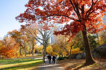 Autumn season at Central Park, new york city, USA