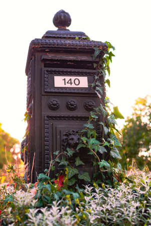 Beautiful metal vintage mailbox overgrown with ivy lit by ondergoing sun. Reklamní fotografie