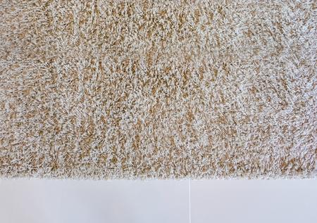 카펫 표면을 배경으로