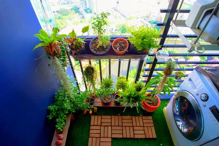 발코니 정원에 매달려있는 냄비에있는 천연 식물 스톡 콘텐츠 - 87736086