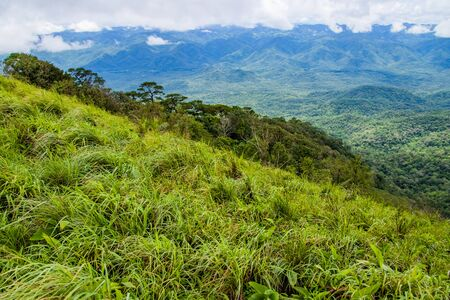 Viewpoint and green fields in the rainy season at Doi Luang Tak, Tak Province,Thailand.