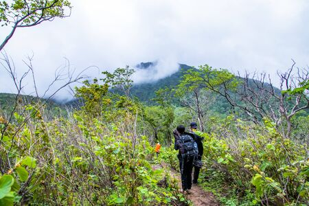 Hikers are trekking to the rain forest at Doi Luang Tak,Tak Province,Thailand.