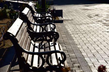 夜の公園のベンチのシーン 写真素材 - 80204837